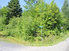 Lot for sale in Austin, Estrie, Chemin  Cooledge, 16868110 - Centris