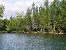 Lot for sale in La Pêche, Outaouais, 41, Chemin  Brennan, 20113407 - Centris