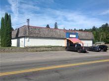 Bâtisse commerciale à vendre à Saint-Donat, Lanaudière, 664, Rue  Principale, 10271872 - Centris