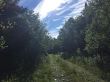 Lot for sale in Eastman, Estrie, Chemin  Bellevue, 14326704 - Centris