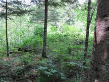 Terrain à vendre à Harrington, Laurentides, Chemin du Gros-Rocher, 25075086 - Centris