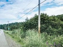 Terrain à vendre à Saint-Damien, Lanaudière, Chemin des Brises, 12439420 - Centris