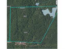 Terre à vendre à Lac-Simon, Outaouais, Chemin  Riopel, 13170461 - Centris