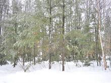 Lot for sale in Saint-Lin/Laurentides, Lanaudière, Chemin  San-Air, 19393322 - Centris