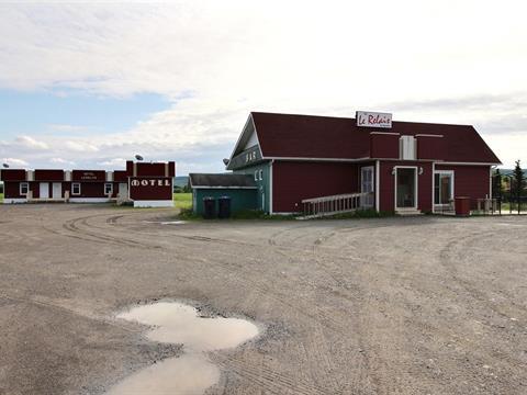 Bâtisse commerciale à vendre à Saint-Michel-du-Squatec, Bas-Saint-Laurent, 15, Route  295 Sud, 23603185 - Centris