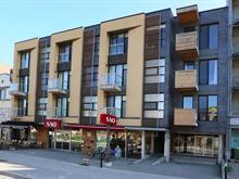 Loft/Studio à vendre à Le Plateau-Mont-Royal (Montréal), Montréal (Île), 5255, Avenue du Parc, app. 304, 15161429 - Centris