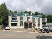 Immeuble à revenus à vendre à Sainte-Agathe-des-Monts, Laurentides, 15, Rue  Chapleau, 11535693 - Centris
