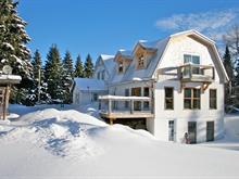 House for sale in Sainte-Agathe-des-Monts, Laurentides, 4648, Chemin  Daoust, 20576544 - Centris