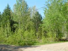 Lot for sale in Saint-Gabriel-de-Brandon, Lanaudière, Chemin du Mont-de-Lanaudière, 13696921 - Centris