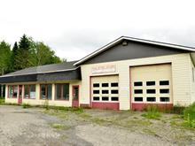 Bâtisse commerciale à vendre à Rivière-Bleue, Bas-Saint-Laurent, 189, Rue  Saint-Joseph Nord, 24446789 - Centris