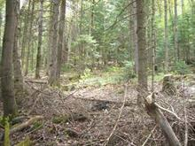 Lot for sale in La Pêche, Outaouais, 14, Croissant du Ruisseau, 15474546 - Centris