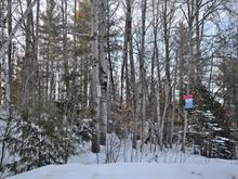 Lot for sale in Ripon, Outaouais, 211, Route  315, 10284258 - Centris