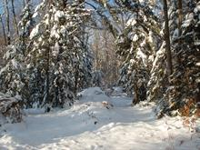 Lot for sale in Sainte-Anne-des-Lacs, Laurentides, Chemin de la Paix, 14546754 - Centris