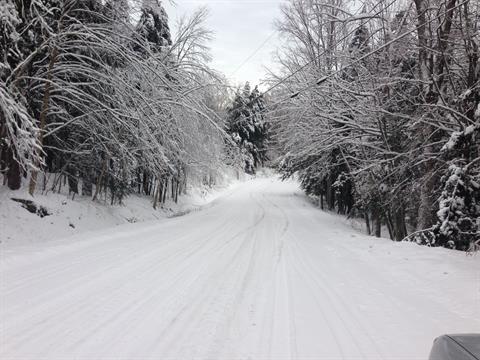 Terrain à vendre à Frelighsburg, Montérégie, Chemin des Cascades, 21650914 - Centris