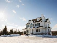 Maison à vendre à Saint-Benjamin, Chaudière-Appalaches, 458, Avenue du Collège, 9931265 - Centris