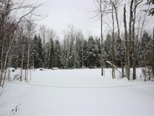 Lot for sale in Sainte-Marie-de-Blandford, Centre-du-Québec, Rue des Saumons, 27678423 - Centris