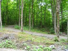 Lot for sale in Saint-Herménégilde, Estrie, Chemin  Armand-Martineau, 26241939 - Centris