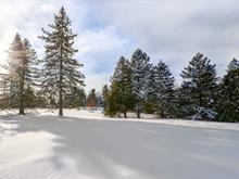 Lot for sale in Magog, Estrie, 30896, Chemin  Southière, 13556542 - Centris