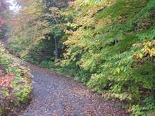 Terrain à vendre à Saint-Adolphe-d'Howard, Laurentides, Chemin de la Montagne, 19685889 - Centris