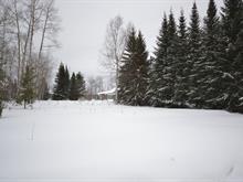 Lot for sale in Val-d'Or, Abitibi-Témiscamingue, 51, Sentier des Fougères, 18681984 - Centris