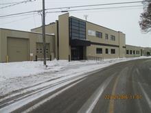 Bâtisse industrielle à vendre à Saint-Hyacinthe, Montérégie, 2875 - 2925, Rue  Nelson, 17655103 - Centris