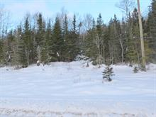 Lot for sale in Les Éboulements, Capitale-Nationale, 727, Rang  Sainte-Catherine, 16153148 - Centris