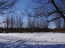 Lot for sale in Sainte-Barbe, Montérégie, 43e Avenue, 28968022 - Centris
