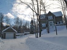 House for sale in Saint-Faustin/Lac-Carré, Laurentides, 10, Chemin des Alouettes, 27820508 - Centris