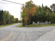 Lot for sale in Sainte-Mélanie, Lanaudière, Rue des Pins, 11458230 - Centris