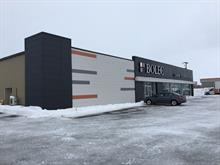 Commercial unit for rent in Gatineau (Gatineau), Outaouais, 152, Chemin  Industriel, suite A, 18614648 - Centris