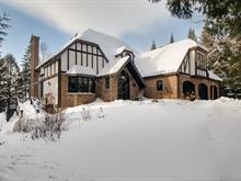 House for sale in Saint-Donat, Lanaudière, 21, Chemin de la Marguerite, 12135420 - Centris
