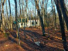 Terre à vendre à Notre-Dame-du-Rosaire, Chaudière-Appalaches, 253, Rang  Saint-Jean, 12592276 - Centris