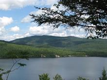 Terrain à vendre à Lamarche, Saguenay/Lac-Saint-Jean, 2675, Chemin  Lachance, 22963815 - Centris