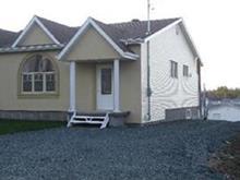 Maison à vendre à Rouyn-Noranda, Abitibi-Témiscamingue, 42, Rue  Poirier, 14101984 - Centris