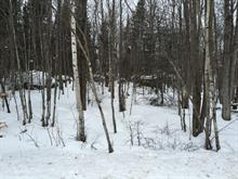 Lot for sale in Val-David, Laurentides, Rue d'Innsbruck, 20511938 - Centris