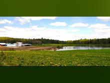 Farm for sale in Déléage, Outaouais, 12, Chemin  Beaudoin, 11010152 - Centris