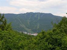 Terrain à vendre à Mont-Tremblant, Laurentides, Chemin du Pain-de-Sucre, 12122083 - Centris