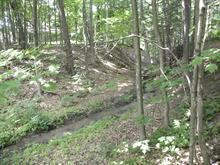 Terrain à vendre à Hudson, Montérégie, 170, Rue  Fairhaven, 17556581 - Centris
