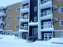 Condo for sale in Rouyn-Noranda, Abitibi-Témiscamingue, 462, Avenue  Québec, apt. 1, 26876767 - Centris
