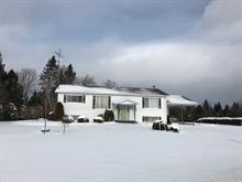 Maison à vendre à Notre-Dame-de-la-Paix, Outaouais, 41, Rang  Sainte-Augustine, 16298508 - Centris