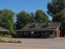 Bâtisse commerciale à vendre à Saint-Ignace-de-Loyola, Lanaudière, 136, Chemin de la Traverse, 25226829 - Centris