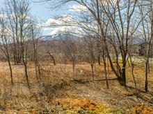 Lot for sale in Bromont, Montérégie, Rue du Faubourg, 14246163 - Centris