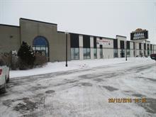 Bâtisse industrielle à louer à Saint-Hyacinthe, Montérégie, 5430 - 5450, Rue  Martineau Est, 12492786 - Centris