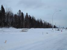 Terrain à vendre à Alma, Saguenay/Lac-Saint-Jean, 401, Rue  Archambeault, 27627622 - Centris