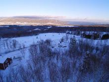 Lot for sale in Baie-Saint-Paul, Capitale-Nationale, Rang  Saint-Antoine Nord, 10646459 - Centris