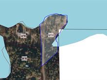 Lot for sale in Saint-Eugène-de-Guigues, Abitibi-Témiscamingue, Chemin du Lac-Cameron, 25083215 - Centris
