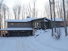 House for sale in Mont-Tremblant, Laurentides, 1243, Rue  Trudel, 10330937 - Centris