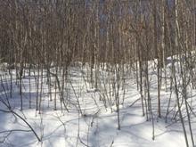 Terrain à vendre à Cantley, Outaouais, 1, Chemin du Mont-des-Cascades, 23138205 - Centris