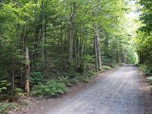 Land for sale in Morin-Heights, Laurentides, Chemin  Bélisle, 10236507 - Centris