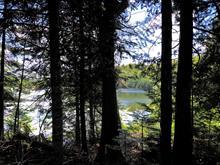 Terrain à vendre à Chertsey, Lanaudière, Chemin des Clématites, 27490939 - Centris